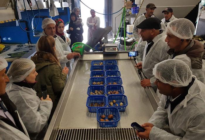 Una delegación pesquera de Argelia se acerca a la realidad del Puerto de Marín